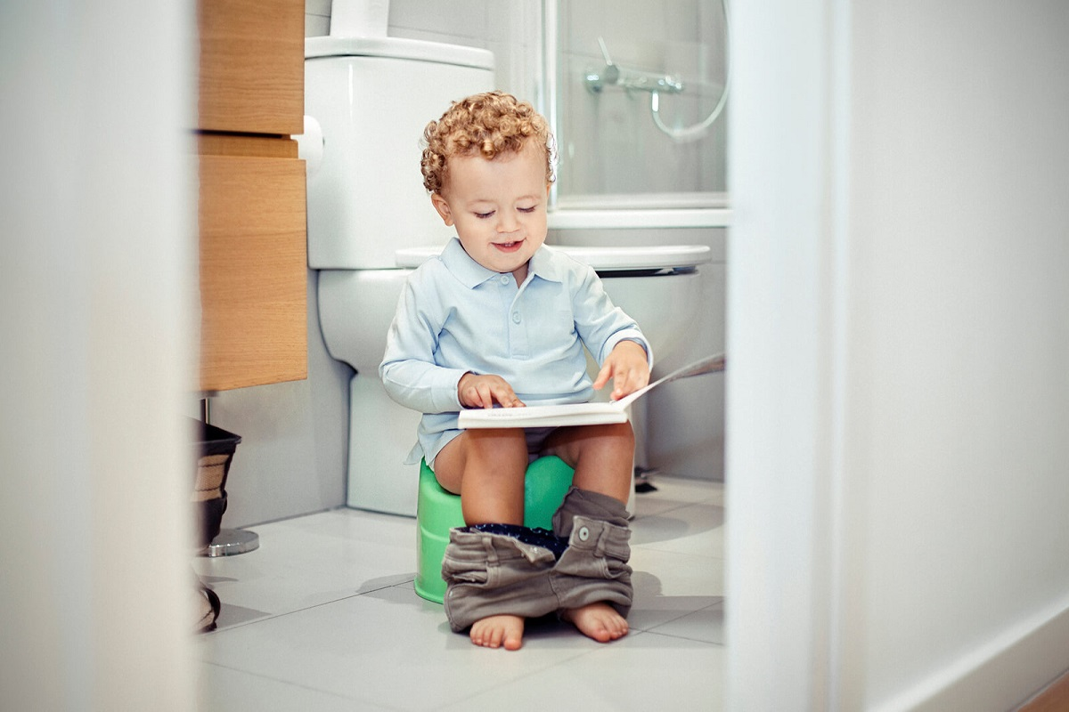 Review: A Potty for Me!: A Lift-the-Flap Instruction Manual