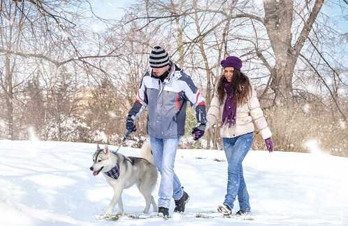8 Useful Tips for Staying Healthy This Winter