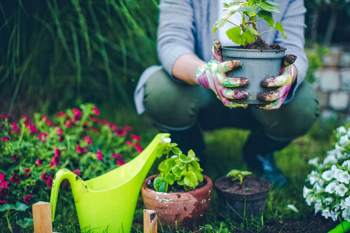 5 Great Hobbies That Can Improve Your Health