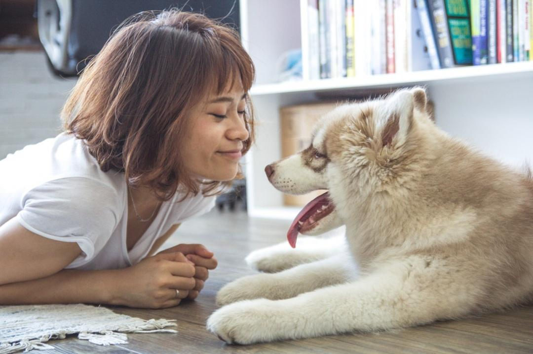 5 Fun Ways to Celebrate Valentine's Day with a Beloved Pet