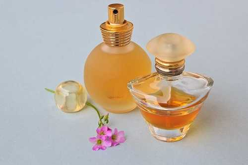 8 Best Perfumes for Women