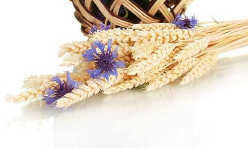 Dried rye wedding bouquet