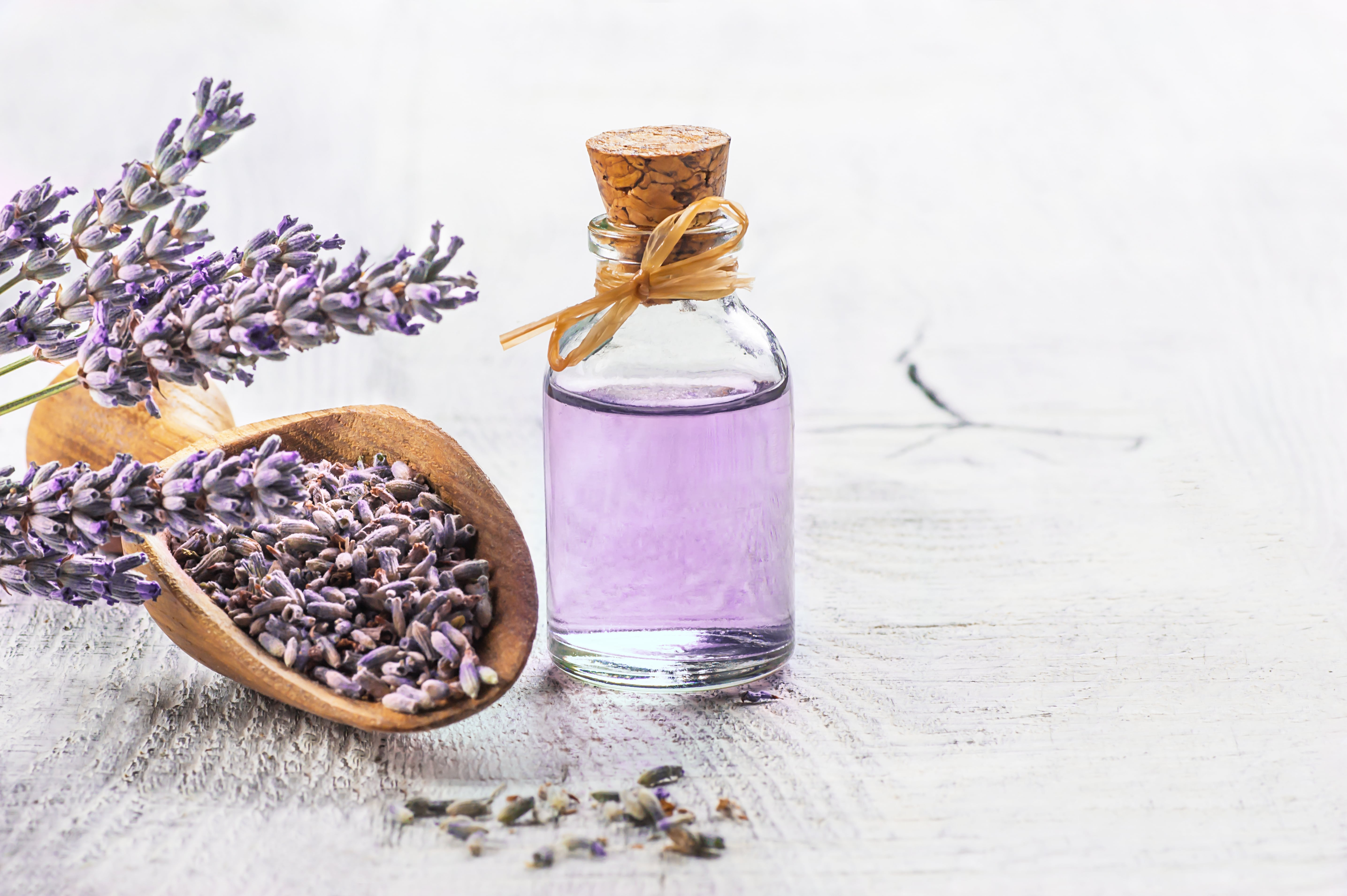 11 Incredible Benefits of Lavender Essential Oil