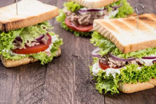 Healthy Sandwiches for Weight Loss