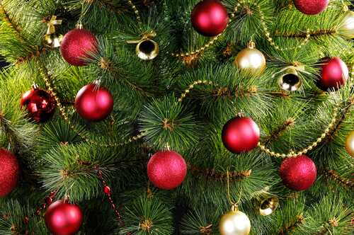 Bulbs with Ornaments