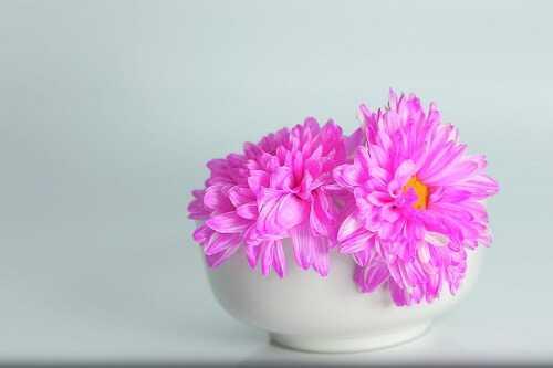 Festive floral centerpieces