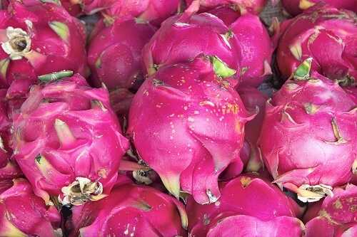 Dragon Fruit improves digestive system