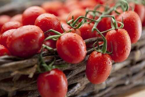 Tomatoes help fight cancer