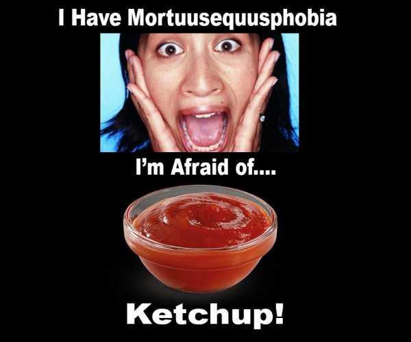 Mortuusequusphobia