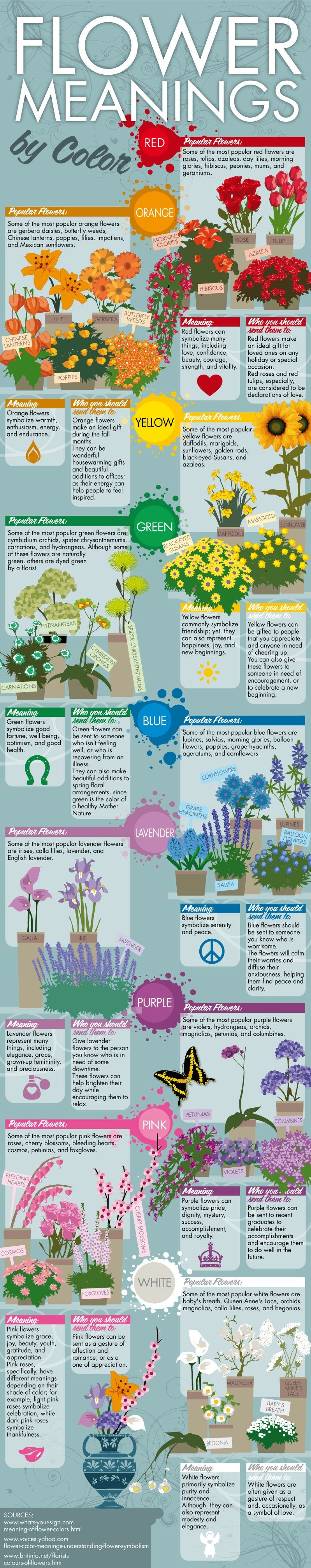 Flower Meaning by Color