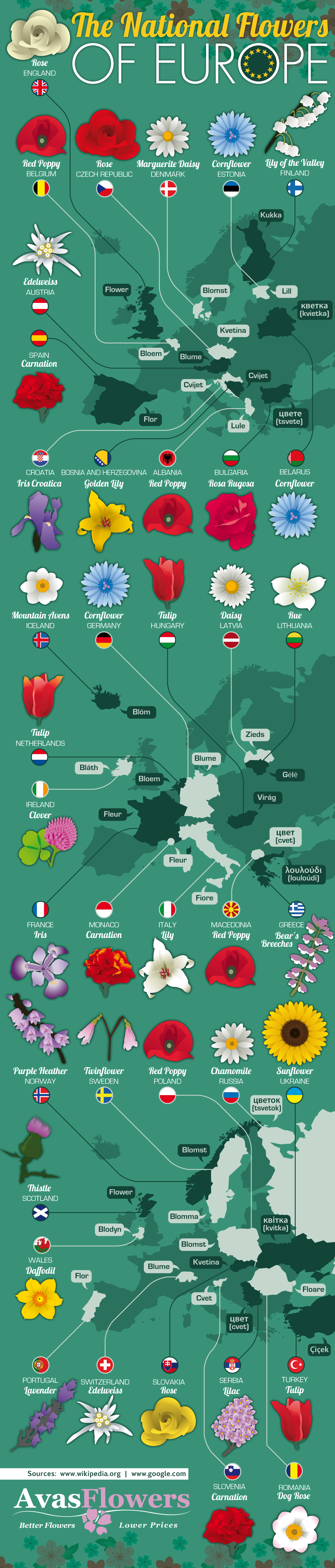 The National Flowers of Of Europe